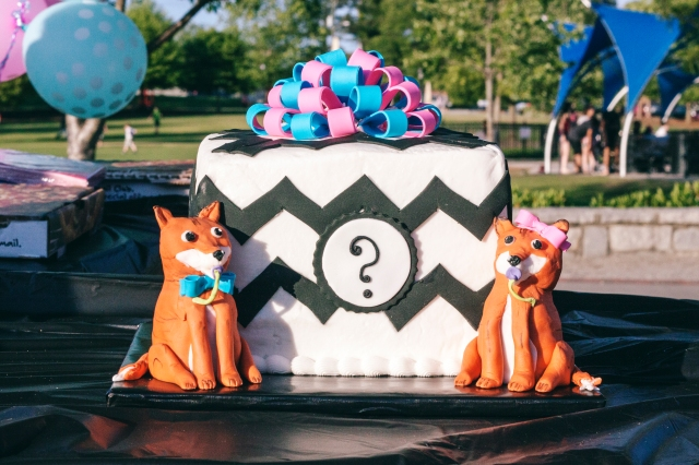 Foxy cake for our baby reveal